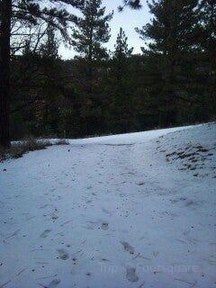 Tehachapi Mountain Park2