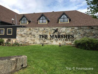 Marshes Golf Club