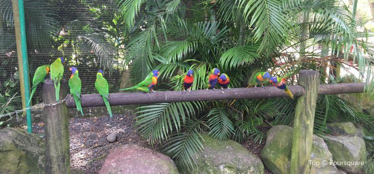 Jardin Botanique de Deshaies2