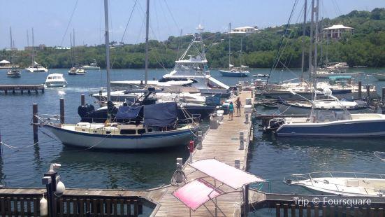 American Yacht Harbor