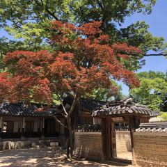 창덕궁 후원 여행 사진