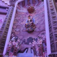 佛教文化館用戶圖片