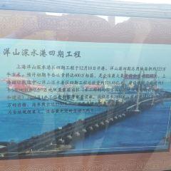 小洋山用戶圖片