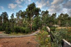 Tidbinbilla Nature Reserve User Photo