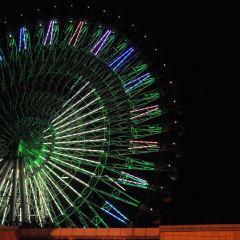 美麗華百樂園用戶圖片
