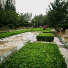 Luqingshuishang Park User Photo