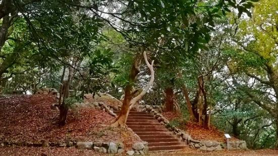 Minami Park