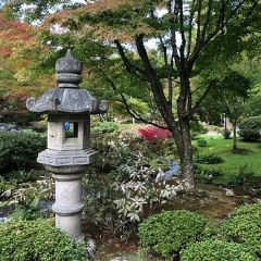 Japanese Garden User Photo