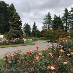 P-Patch Community Gardens用戶圖片