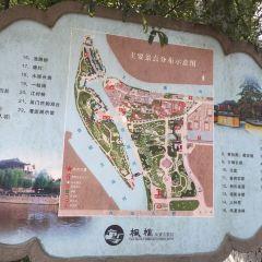 楓橋景區用戶圖片