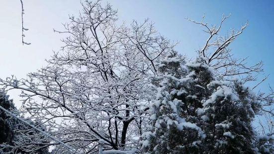 濟南蟠龍山森林公園