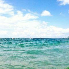 Pattaya Diving and Scuba Diving User Photo