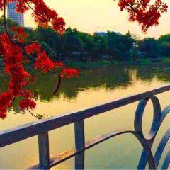 핑강 여행 사진