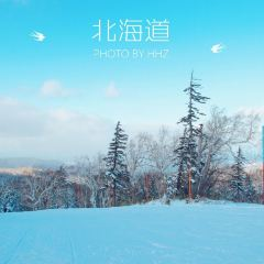Sapporo International Ski Resort User Photo