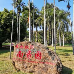 Xishuangbanna South Medicinal Plant Garden User Photo