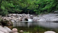 通天河国家森林公园-凤县-扶疏子