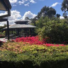 舊金山植物園用戶圖片