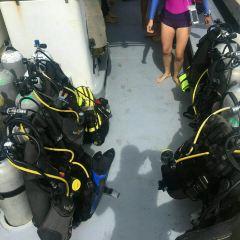 水肺迷潛水店用戶圖片