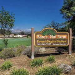 Bates Nut Farm User Photo