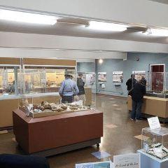 Museum El Ceibo User Photo