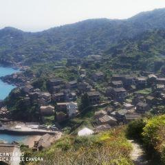 嵊山枸杞景區用戶圖片