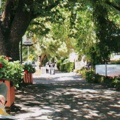 漢多夫德國村用戶圖片
