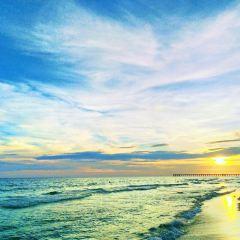 Gulf World Marine Park User Photo