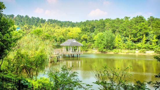 유쯔산 삼림공원