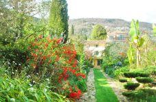 法兰西堡别墅花园-格拉斯-飞翔的白鸽儿