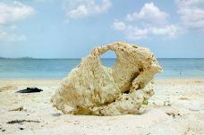 米原海滩-石垣