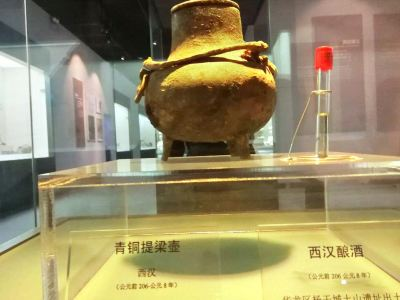 Puyang Museum