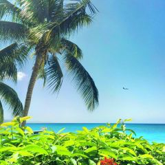 aqua sol beach User Photo