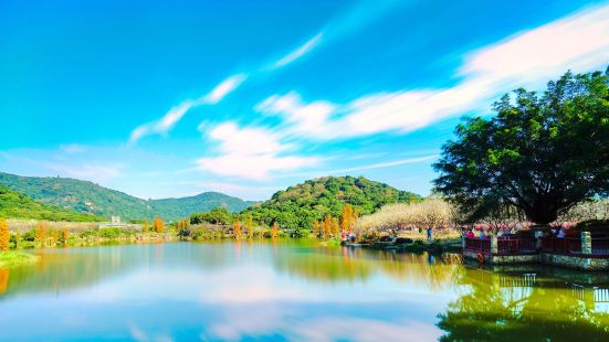 Xiangxue Park