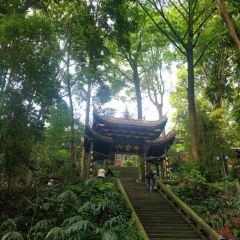 Mt. Emei Natural Ecology Monkey Reserve User Photo