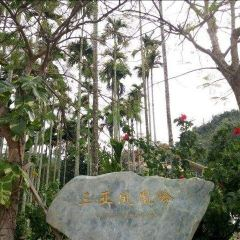 싼야 펑황링 공원 여행 사진