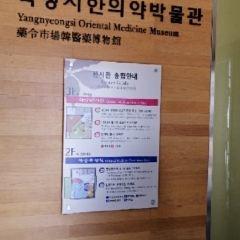 대구 약령시 한의약 박물관 여행 사진