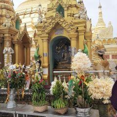 Shwedagon Pagoda User Photo