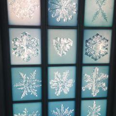 Snow Crystal Museum User Photo