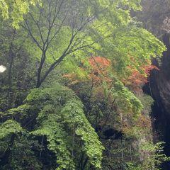 Akiyoshi Limestone Cave User Photo