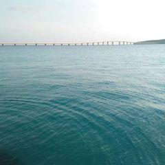 Kurima Bridge用戶圖片