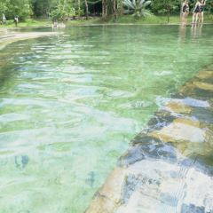 Krabi Hot Springs User Photo