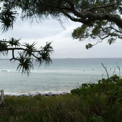 Noosa Main Beach User Photo