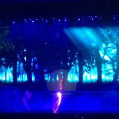 Charming Danang Show in Da Nang User Photo