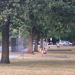 Memorial South Park User Photo