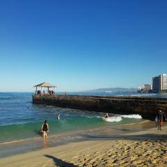 庫希歐海灘公園用戶圖片
