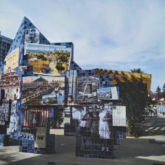 科羅拉多島用戶圖片
