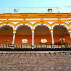 Plaza de toros de la Real Maestranza de Caballería de Sevilla User Photo