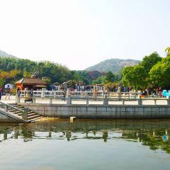 Baimajian Longchi Scenic Area User Photo
