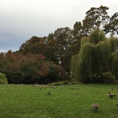 燈塔山公園用戶圖片