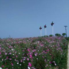 웨이란화하이 여행 사진